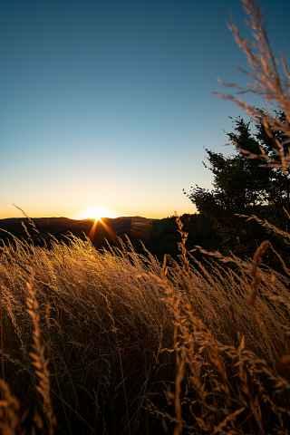 Sonnenuntergang Niesten