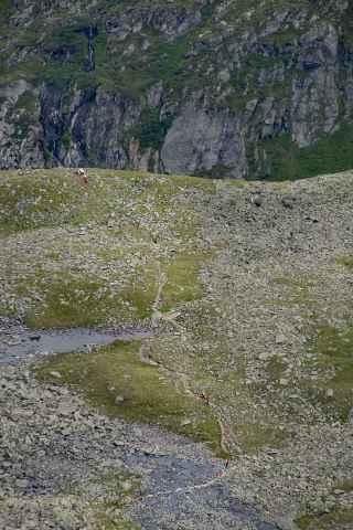Blick von der Rinnenspitze ins Tal