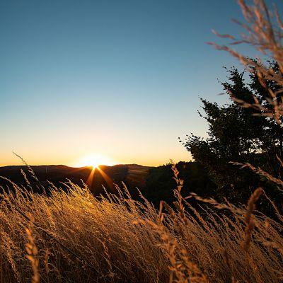Sonnenuntergang an der Burgruine Niesten
